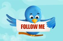 fridja twitter now active