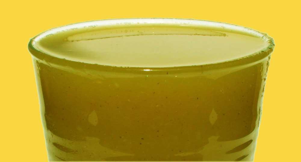 Cantaloupe-Kiwi-Celery-Blackberry-Juice-Recipe